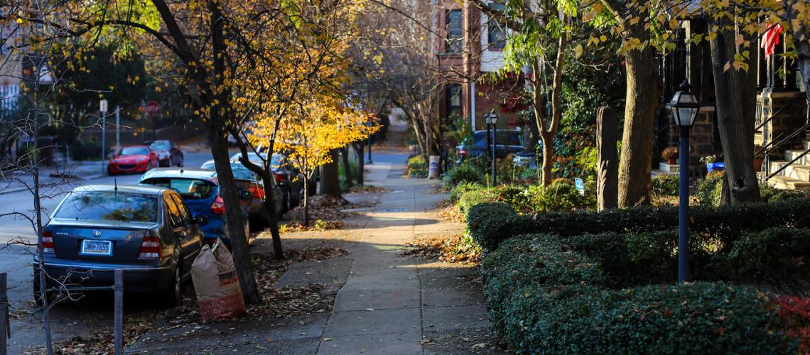 Spruce Hill in Autumn